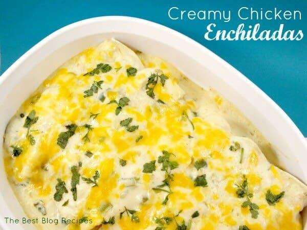 White Chicken Enchiladas - The Best Blog Recipes