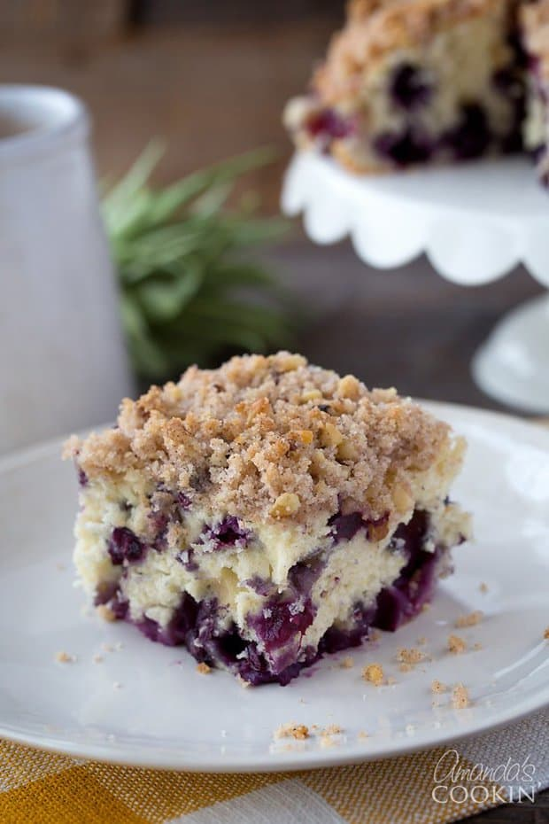 Blueberry Breakfast Cake -- Part of The Best Blueberry Recipes