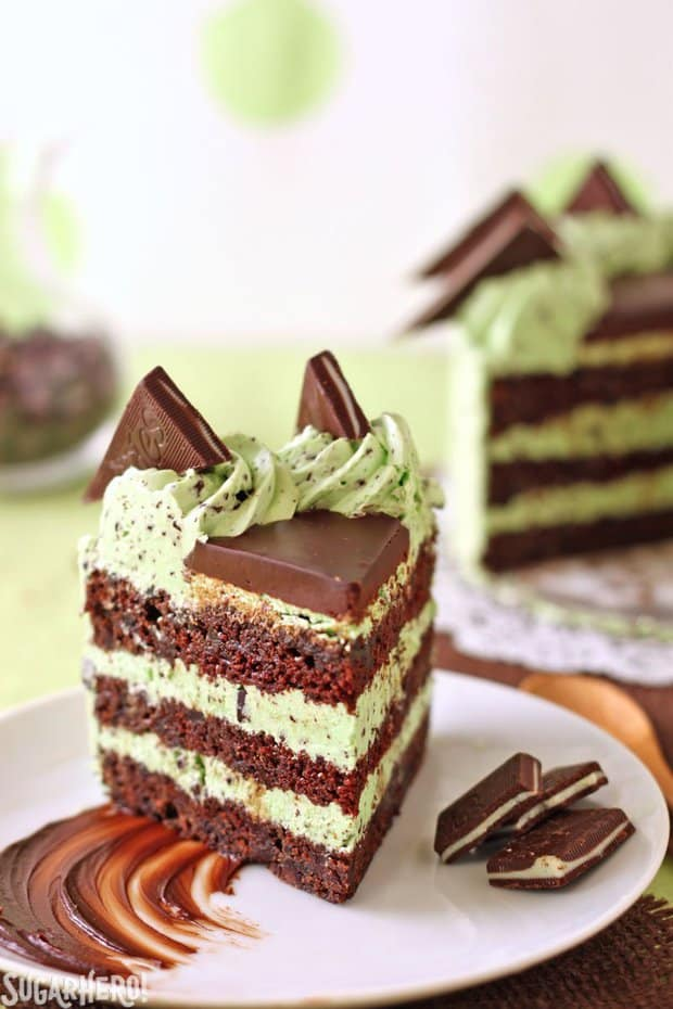 This Mint Chocolate Chip Layer Cake is a mint lover's dream come true! Chocolate cake layers with chunks of Andes mints and mini chocolate chips, plus a silky-smooth mint buttercream with lots of flecks of mint chocolate chips.