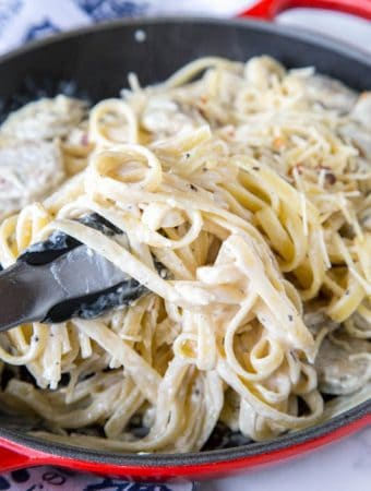 Creamy Alfredo Recipes