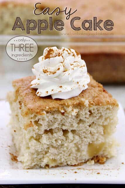 Easy Apple Cake - The Best Blog Recipe