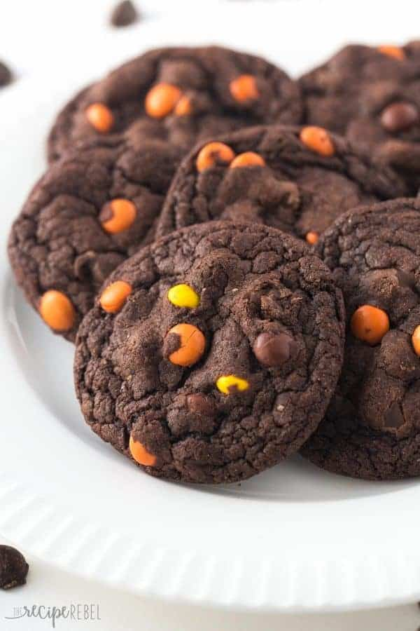udgy, chewy double chocolate cookies loaded with Reese's Pieces! Chocolate peanut butter perfection
