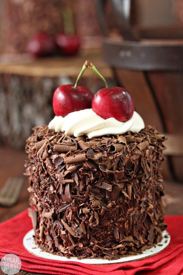How beautiful and delicious does this cake look?