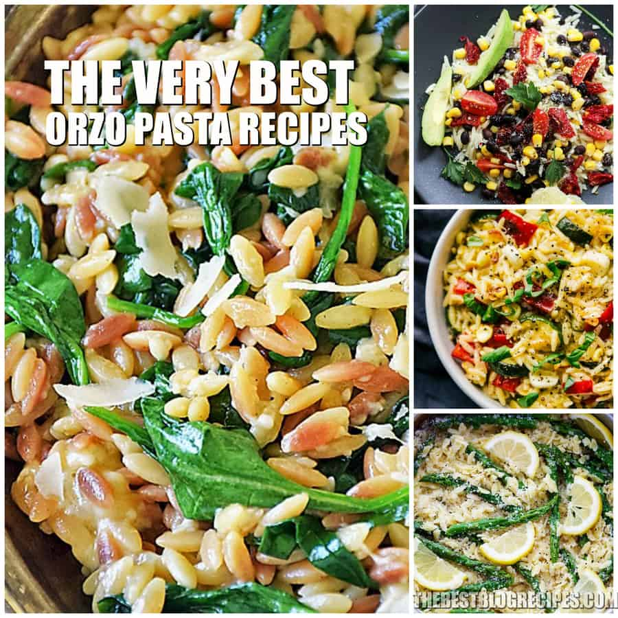 The Very Best Orzo Pasta Recipes
