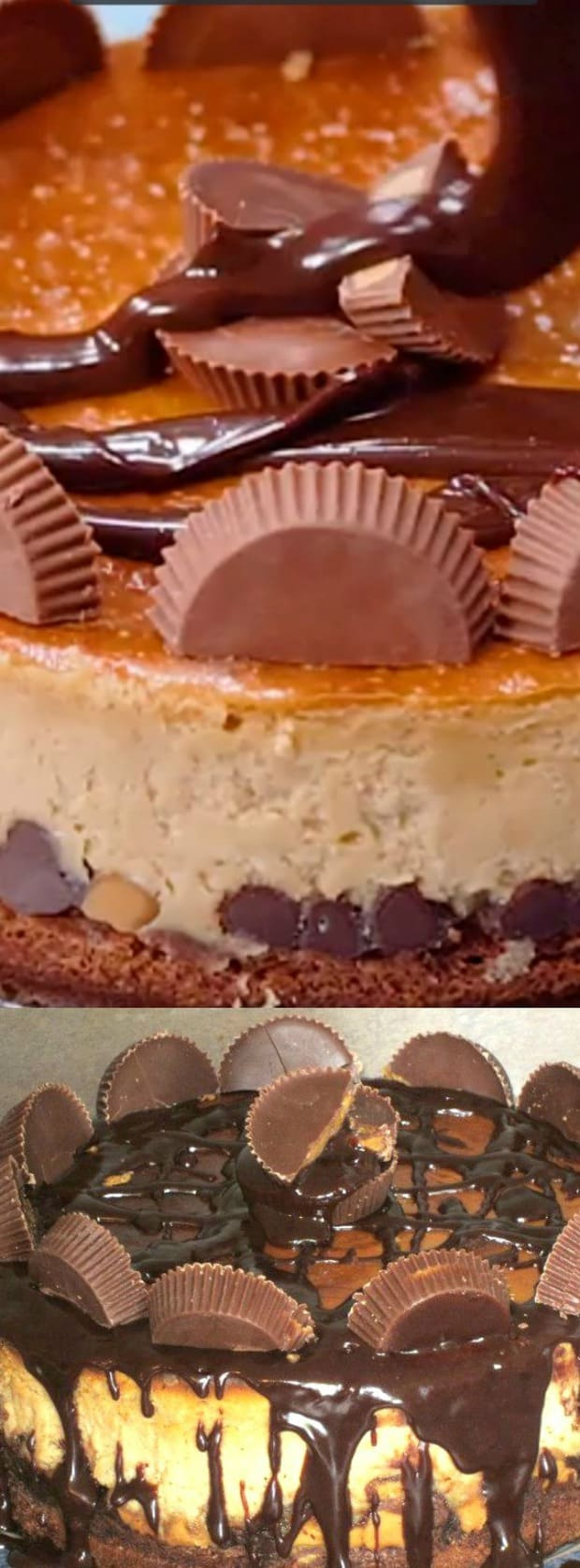 Brownie Bottom Peanut Butter Cheesecake