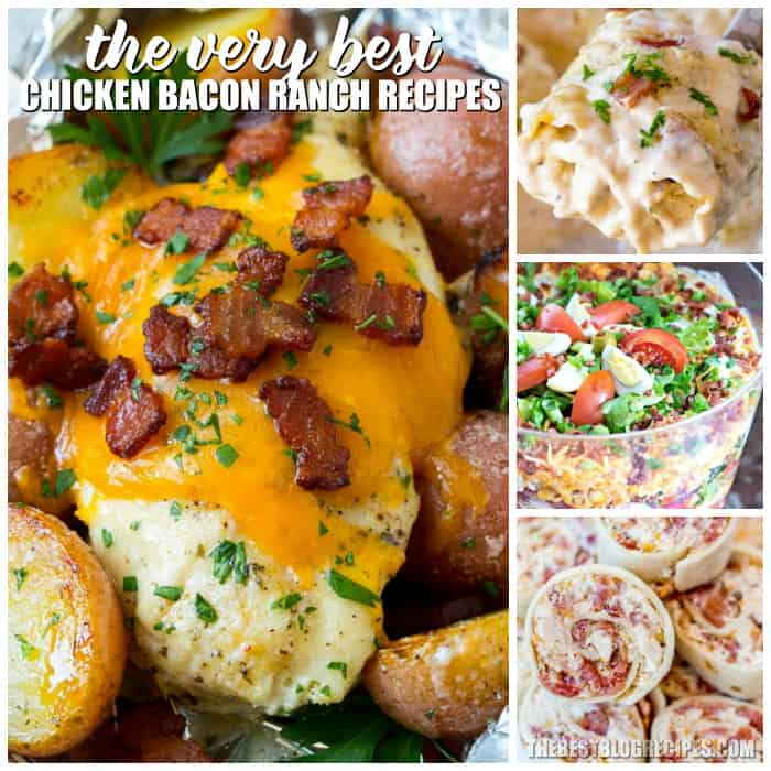 For the most perfect combination of flavors you need The Best Chicken Bacon Ranch Recipes! These recipes are so delicious and will be favorites of yours for years to come!