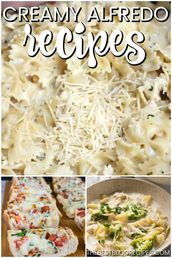 For easy, delicious creamy dinners, you need Creamy Alfredo Recipes! These Alfredo dishes have to die for flavor and are incredibly easy to make.
