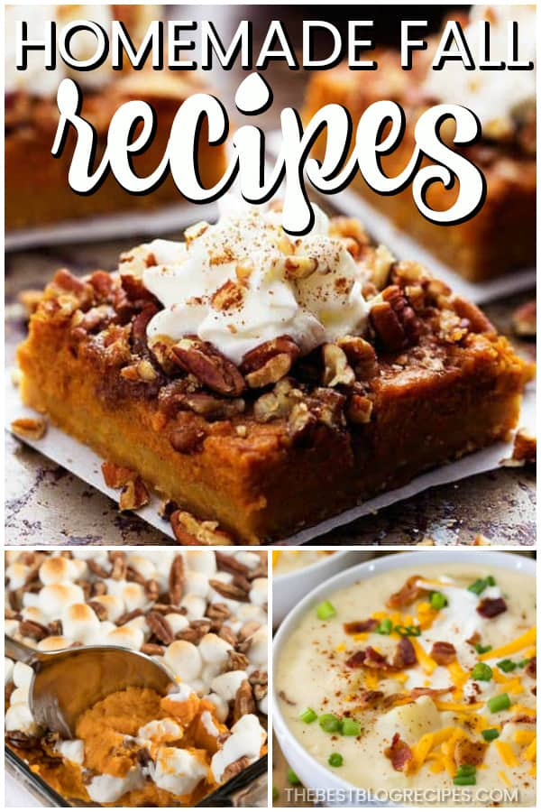 The Best Homemade Fall Recipes are the perfect way to bring in the holiday season! Fall is all about the cozy, warm, and delicious food, and the recipes in this list represent the season perfectly.